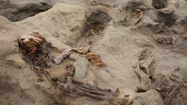 Los sacrificios masivos de niños eran un ritual habitual en el Antiguo Perú
