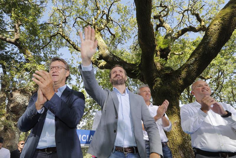 Casado: Sánchez por fin reconoce lo que quiere, repetición de elecciones