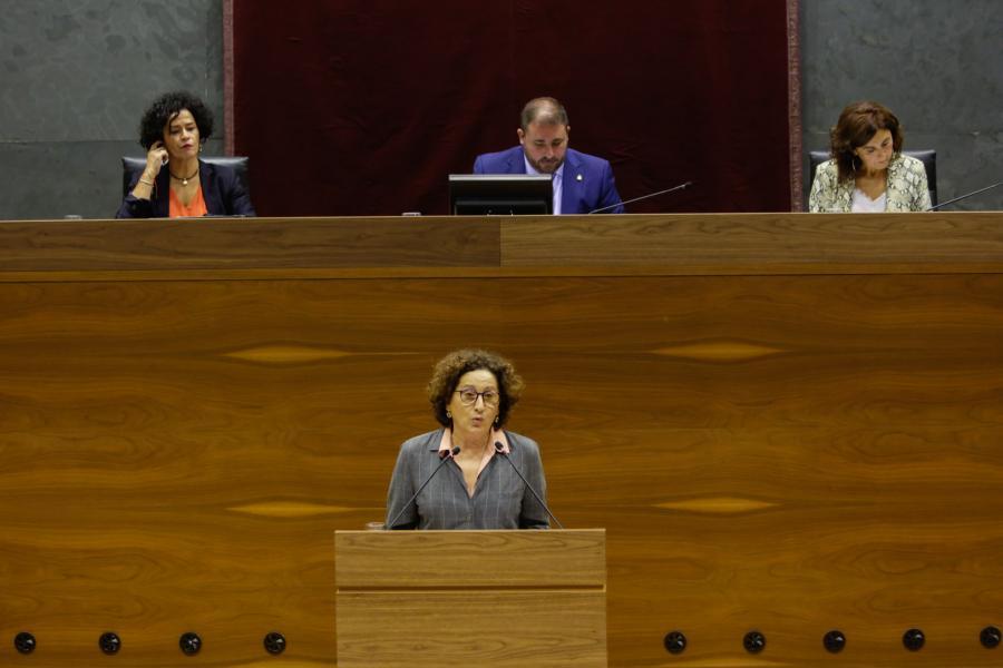 El Parlamento aprueba un suplemento de crédito de 1,8 millones para el SNE