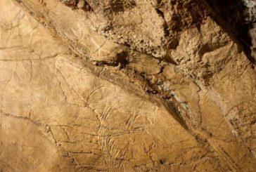 El valle del Oria, la incógnita paleolítica de la prehistoria cantábrica