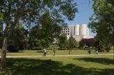 Universidad de Navarra entre las 100 universidades más sostenibles del mundo, según UI Greenmetric