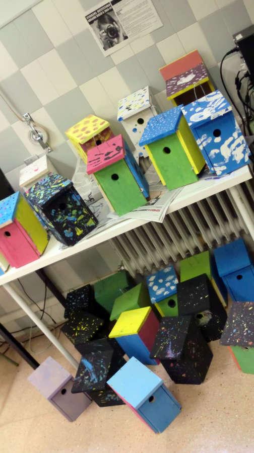 150 cajas nido colocadas en Pamplona