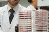 Una hoja de ruta para añadir la ivermectina al arsenal de fármacos contra la malaria