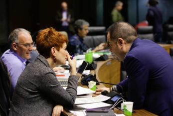 Presupuestos Navarra 2021: Para PSN el acuerdo con Bildu es para