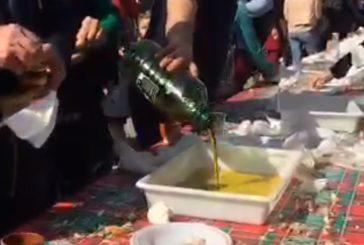 Arróniz celebra el 'Día de la Tostada y la Fiesta del Aceite de Navarra'