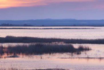 En la celebración del Día Mundial de los Humedales, Navarra destaca sus numerosas zonas húmedas protegidas
