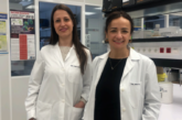 Worldwide Cancer Research apoya una investigación del Cima Universidad de Navarra contra el cáncer colorrectal