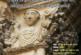 """AGENDA: 12 de marzo, en el Ayuntamiento de Fitero, conferencia """"¿Qué sabemos sobre San Raimundo de Fitero..."""