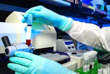 Repunta el número de fallecidos con coronavirus en España: 83 en las últimas 24 horas