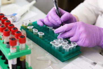 Éxito de la primera vacuna experimental probada en humanos contra el coronavirus, que podría estar a final de año