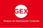 Navarra selecciona personas expertas en internacionalización para dinamizar el programa de Grupos de Exportación Conjunta GEX