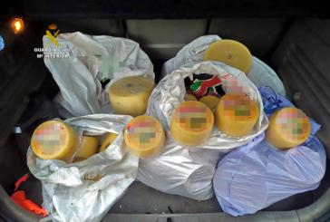 Investigado como presunto autor de robo de quesos en la Comarca de Pamplona