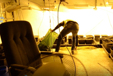 Incautados 7 kilos de marihuana en una nave en la localidad de Berrioplano