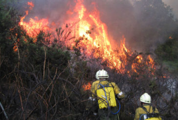 El confinamiento del estado de alarma y la lluvia reducen casi un 60% los incendios en Navarra