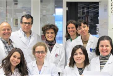 Cima Universidad de Navarra identifica mecanismos que bloquean la fibrosis hepática