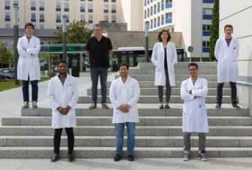 CIMA: Identifican un compuesto que previene la muerte neuronal de ELA