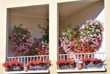 6 balcones premiados en el Concurso de flores del Concejo de Cizur Menor