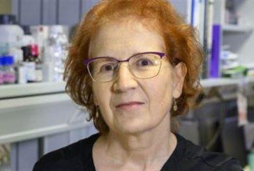 Margarita del Val, viróloga del CSIC:
