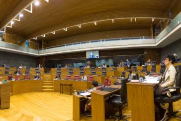 El Defensor del Pueblo de Navarra presenta el informe 2019 en el Pleno del Parlamento