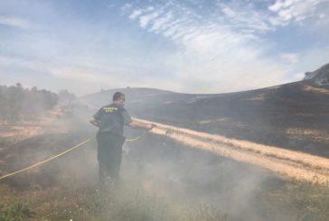 Provocado un incendio a 1 km de Los Arcos