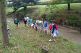 """La II edición de los campamentos """"Cienceando"""", para niños de entre 6 y 12 años, arranca en julio"""