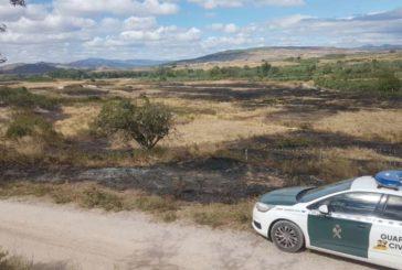 Un incendio en una finca en Cintruénigo afecta a 24 hectáreas