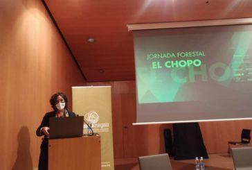 La consejera Gómez subraya la importancia económica, social y ambiental de las choperas
