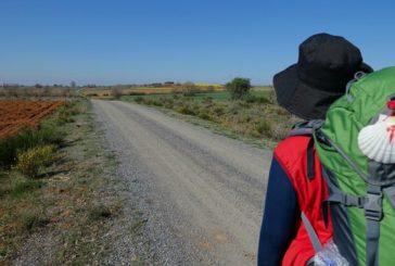 Un Plan Integral reforzará la información y la seguridad en el Camino de Santiago en Navarra