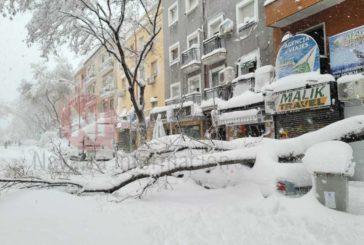 El Gobierno reconoce a la Comunidad de Madrid como zona catastrófica tras Filomena