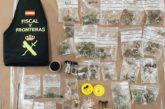 """Investigados los propietarios de """"Grow Shop"""" por tráfico de drogas"""
