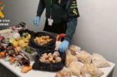 Intervenidos en Noáin (Navarra) cerca de 53 kilos de alimentos prohibidos