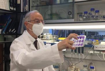 """El virólogo del CSIC Luis Enjuanes sobre la vacuna española: """"Vamos a por una vacuna intranasal y de una sola dosis muy potente"""""""