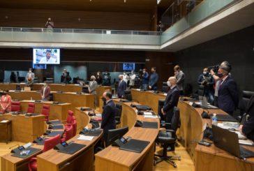 El Pleno guarda un minuto de silencio en memoria del periodista navarro David Beriáin