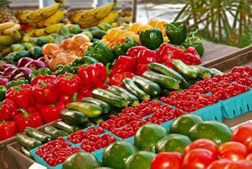 Récord de casi 18.000 millones de euros en el superávit de la balanza comercial agroalimentaria en 2020