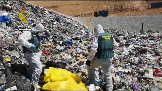 La Guardia Civil ha investigado más de 3900 delitos contra el medio ambiente durante el 2020