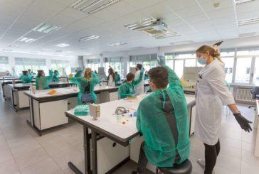 El Cima Universidad de Navarra sale a la calle para acercar la investigación a los más jóvenes