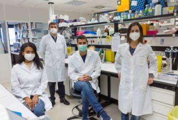 Asocian la resistencia a la insulina con la protección frente a las crisis de porfiria aguda intermitente