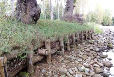 Abierta la convocatoria de subvenciones a los lugares de la Red Natura 2000 de carácter fluvial